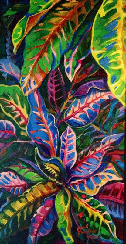 Variegated Crotons